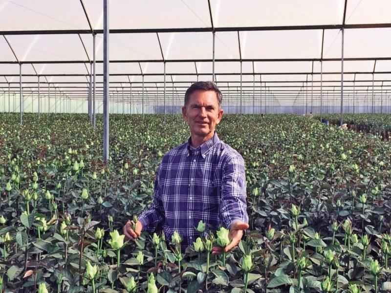 Simon van der Burg: Inhaber der Gärtnerei Timaflor
