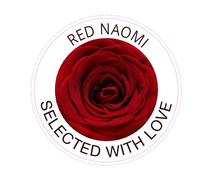 Red Naomi Rosen