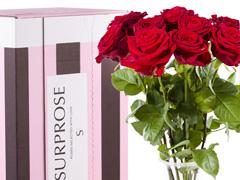 10 rote Rosen bestellen