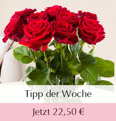 Rote Rosen bestellen