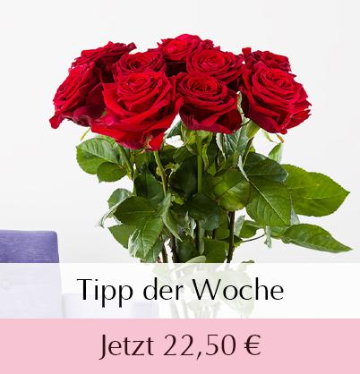 10 Rote Rosen