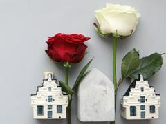 Holländische Rosen