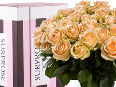 Lachsfarbene Rosen verschicken
