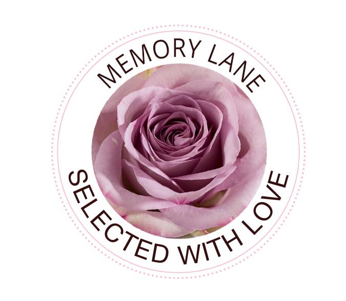 Memory Lane Rosen