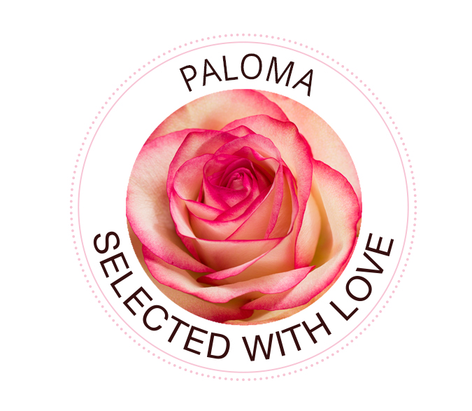 Paloma Rosen