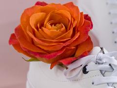 Orange Rosen - Bedeutung
