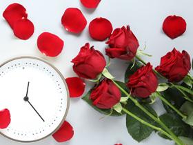 Rosen bestellen für jeden Anlass