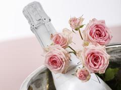 Rosen und Champagner