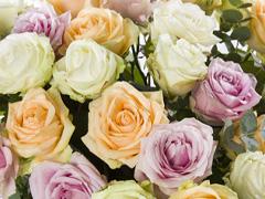 Rosenstrauß online bestellen