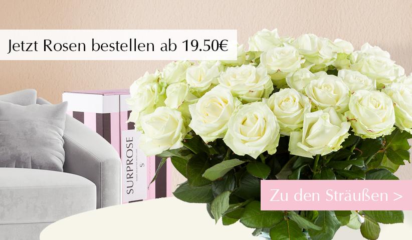 Rosen kaufen