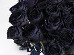 Schwarze Rosen bestellen
