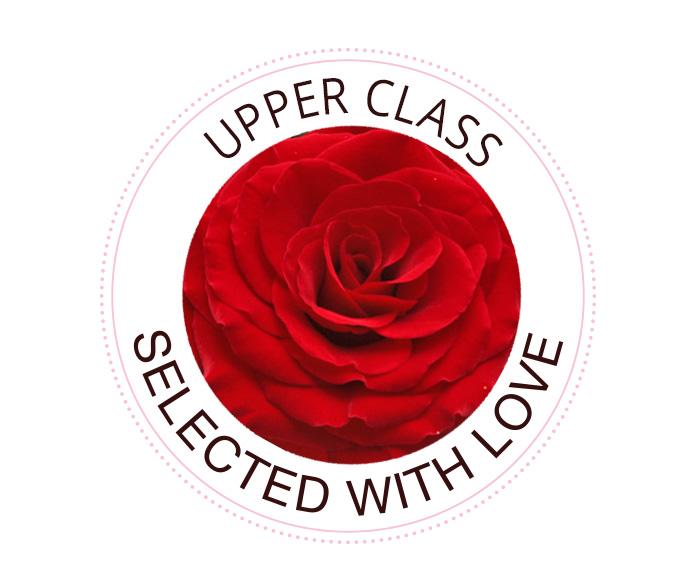 Upper Class Rosen